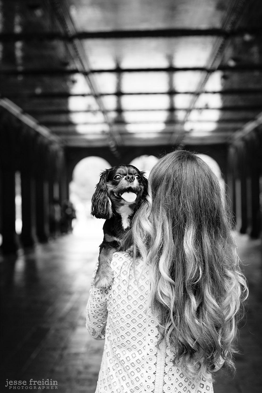 DogPhotographerNewYork.jpg