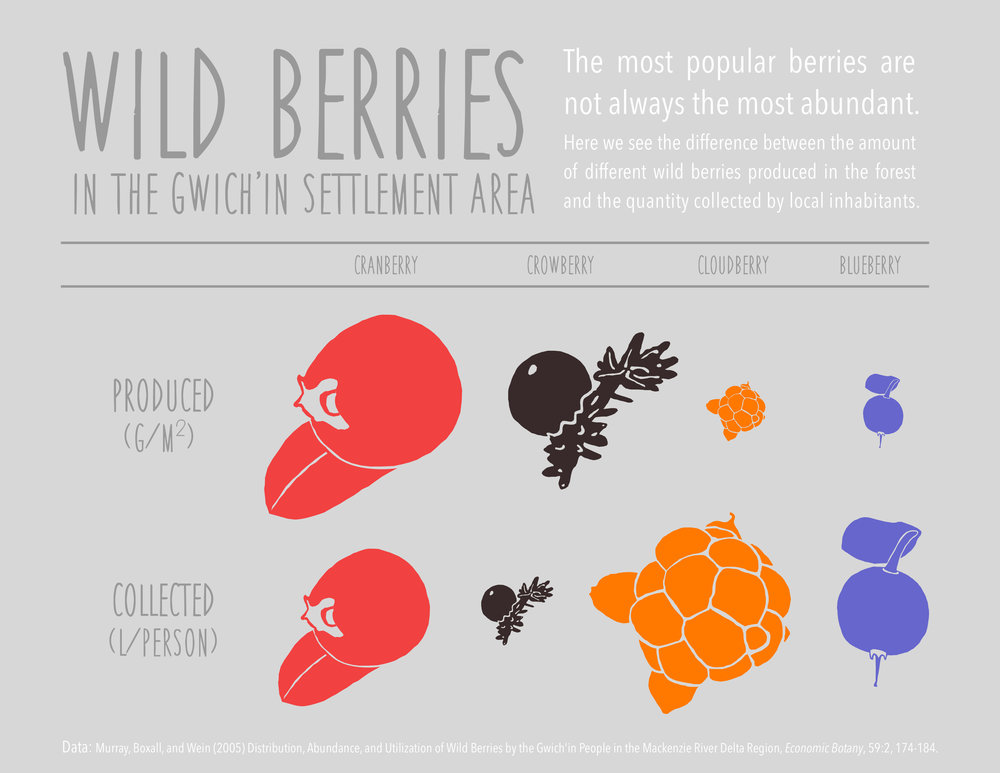 berry_viz_berries.jpg