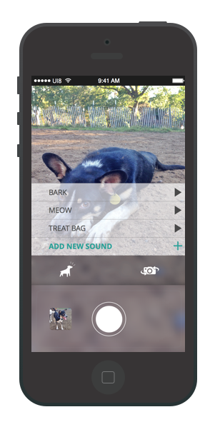 This app sought to solve the problem of getting your dog's attention when snapping that Instagram-worthy shot.
