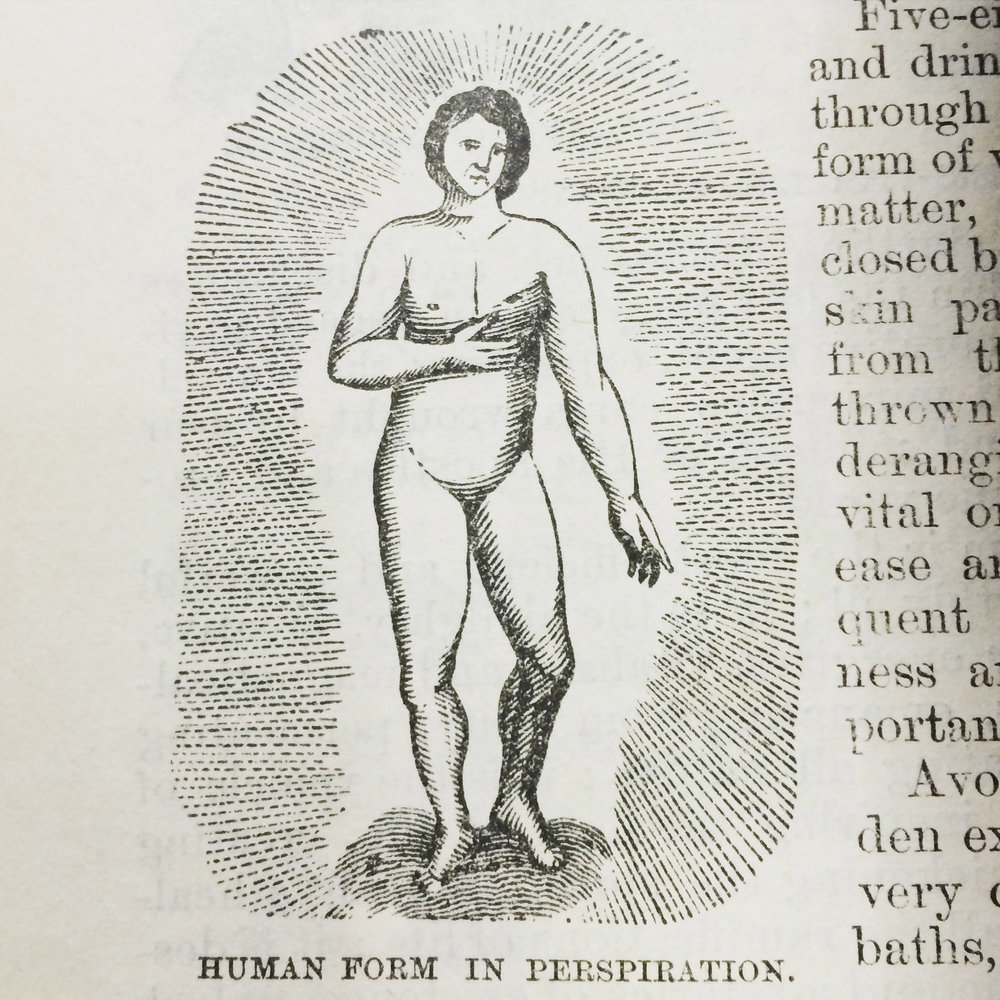 human Form.jpg