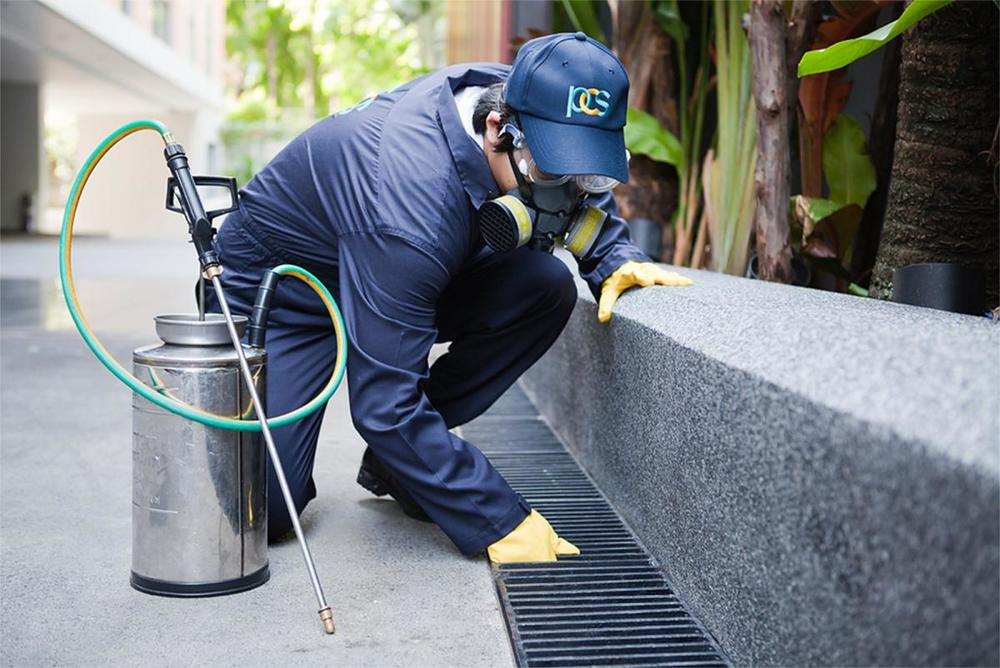 spraying outdoor pest control