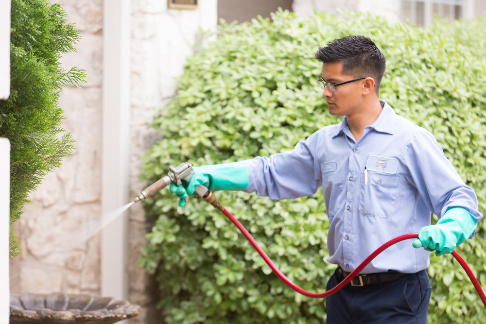 residential pest control application