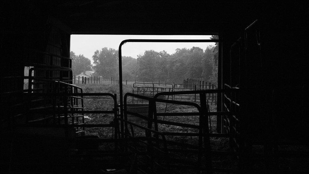 farm (1 of 1).jpg