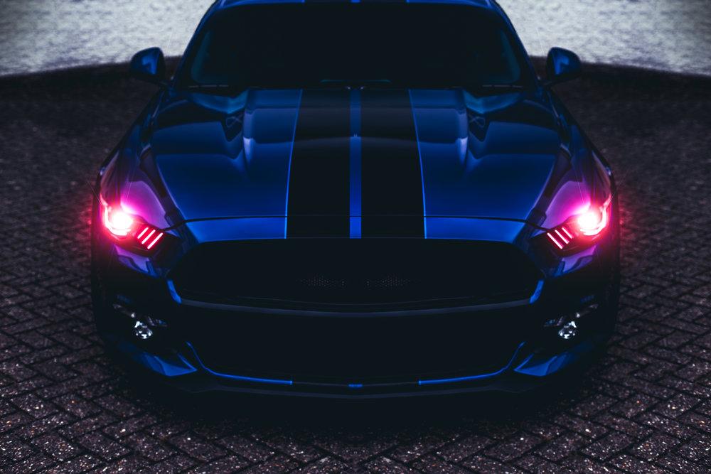 Mustang1.jpg