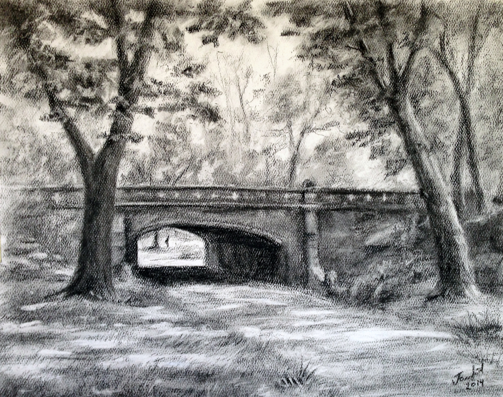 Central Park 11x14 Charcoal