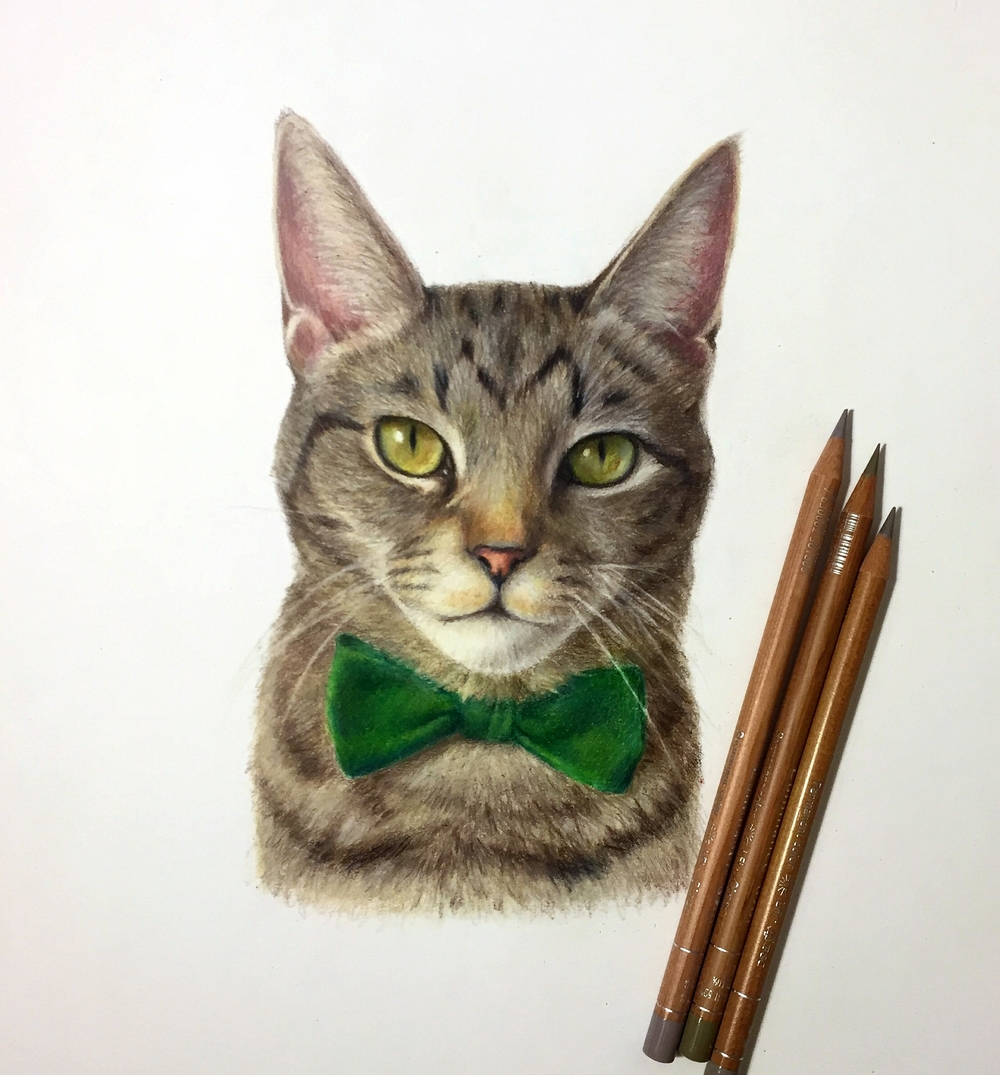 Max 11x14 Colored Pencils