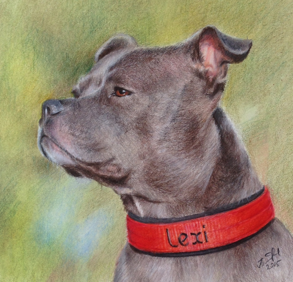 Lexi 8x8 Colored pencils