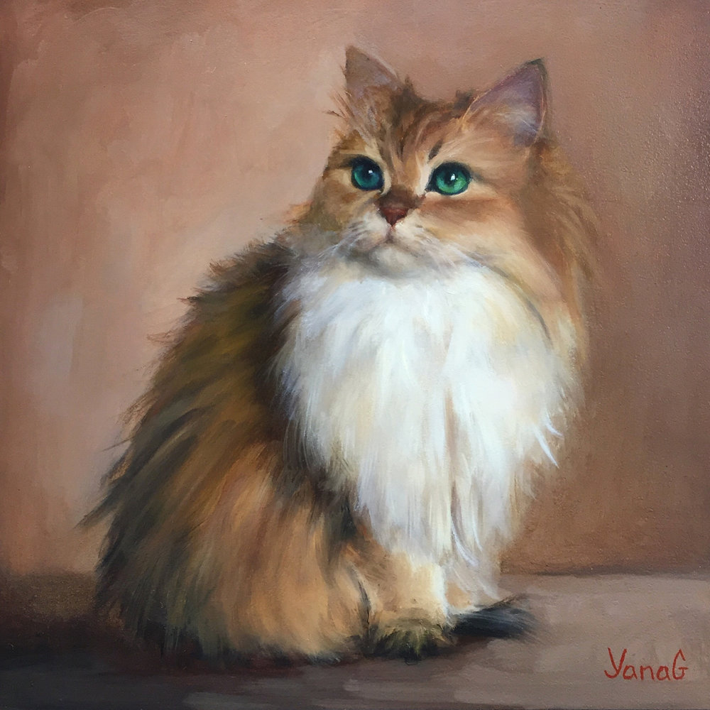 Smoothie the cat 8x8 Oil on board