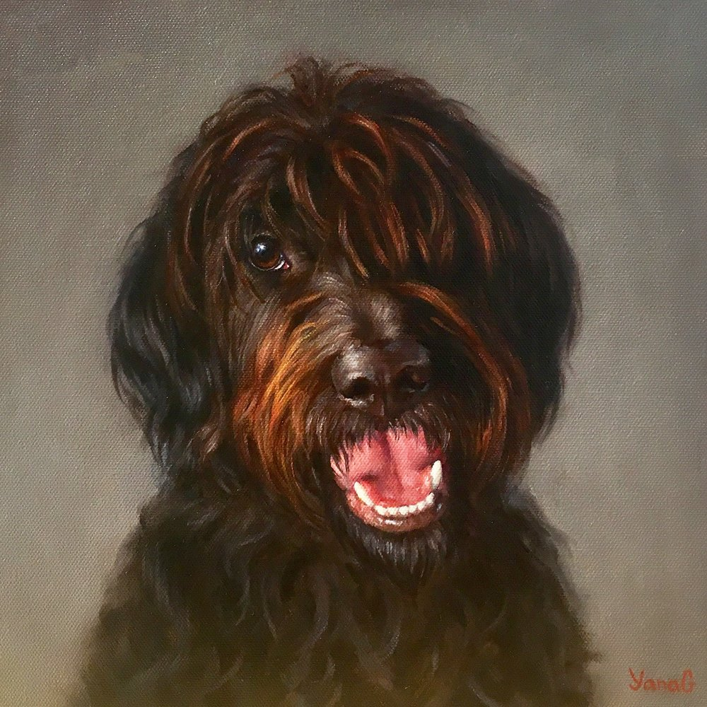Charli 12x12 Oil on canvas