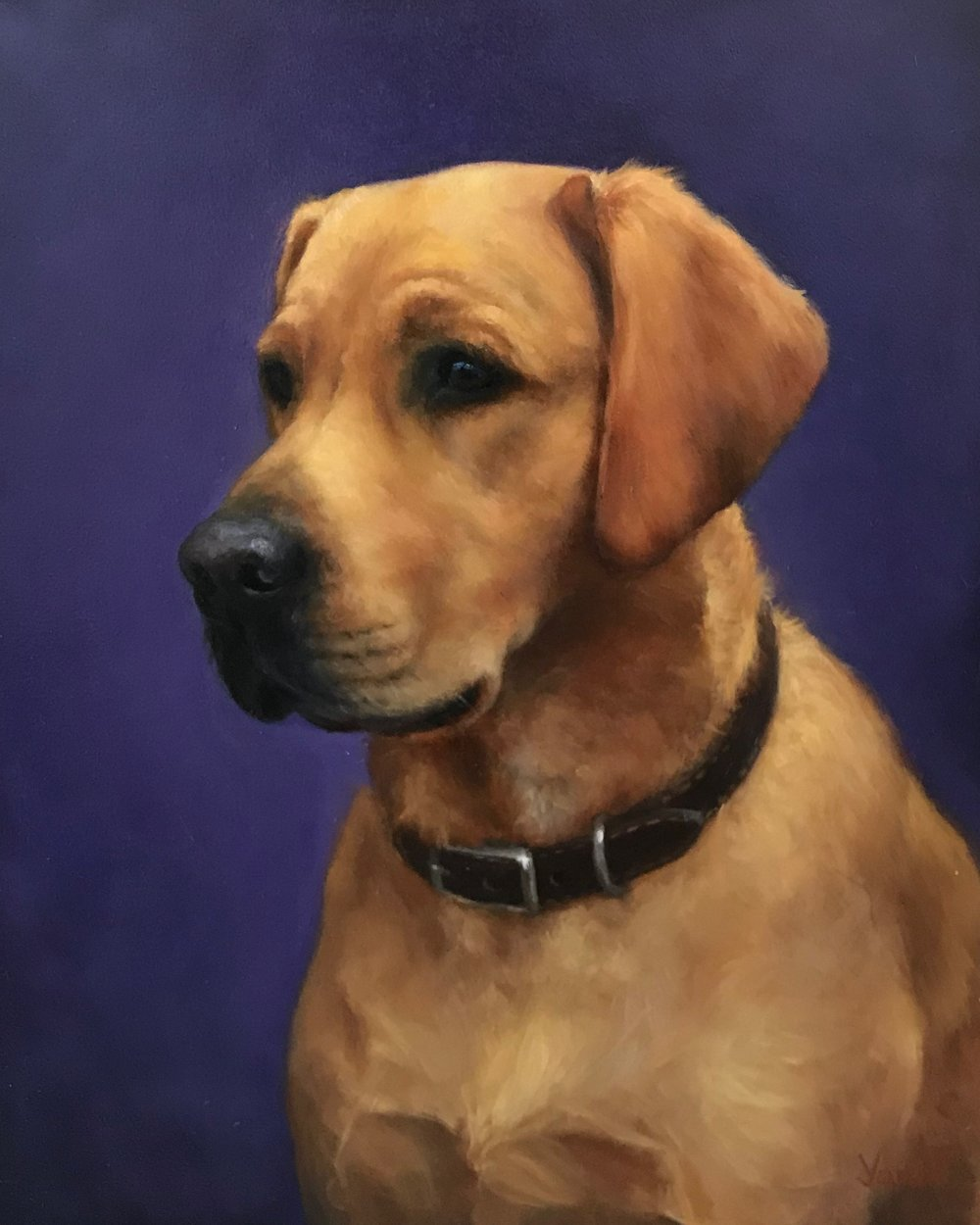 Buddy 8x10 Oil