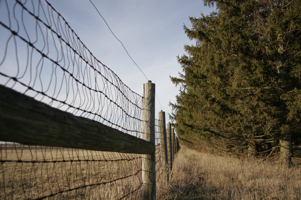 Miles of fence