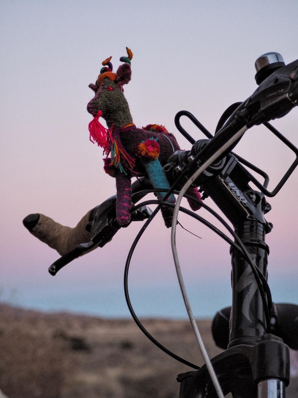 My bike mascot, a Peruvian mountain goat