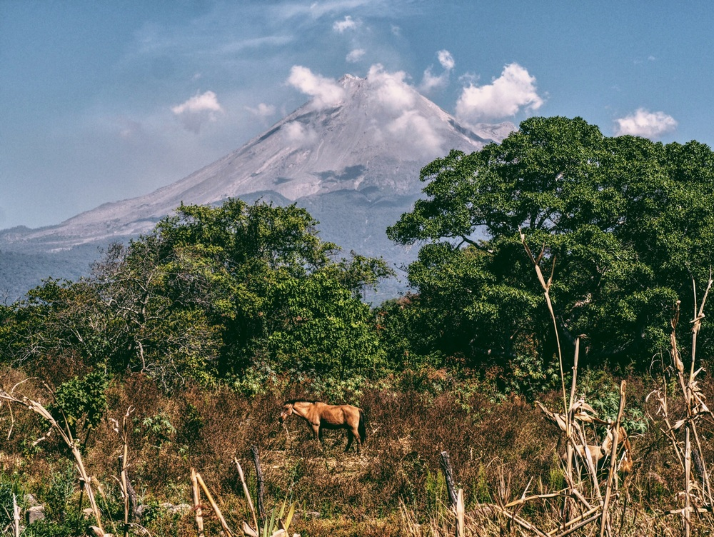 Volcan de Colima in the distance