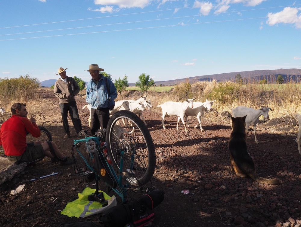 Chatting with the goat shepherds about politics while changing a flat