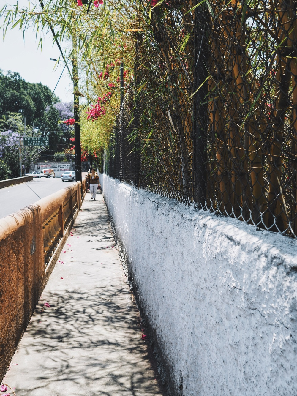 Walking around Cuernavaca