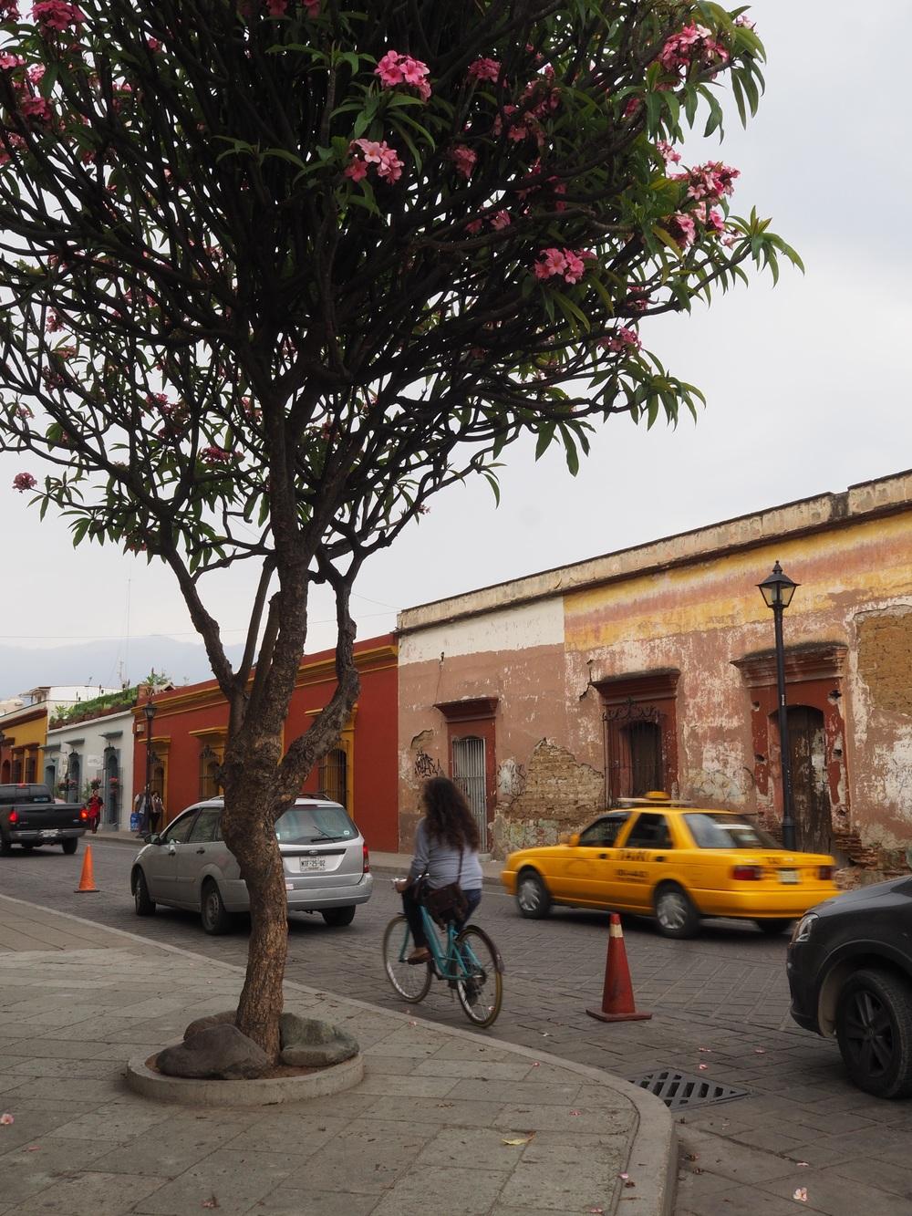 Colorful Oaxaca City