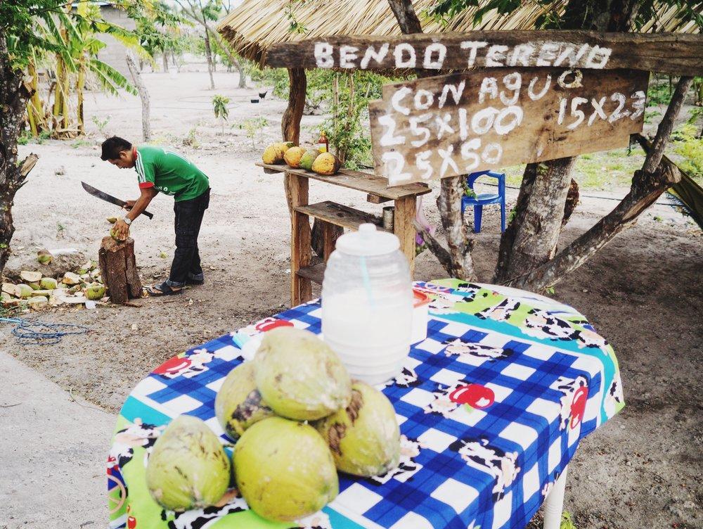 Cocos fríos - we had two each