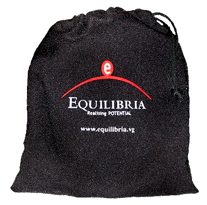 """Bag with Logo containing descriptor cards about the """"e-man"""" and what the colors mean to educate the managers and employees."""