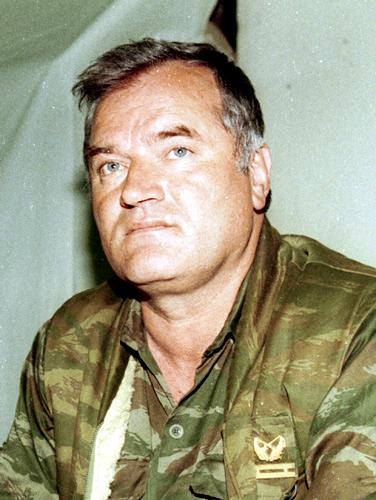 Evstafiev-Ratko Mladić, 1993