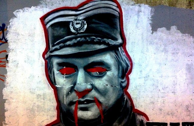 graffitti-portrait-of-ratko-mladic487-photo-by-vdemers.jpg