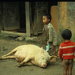 Slum Children, Kathmandu, Nepal, Photo by Takayuki Shiraiwa