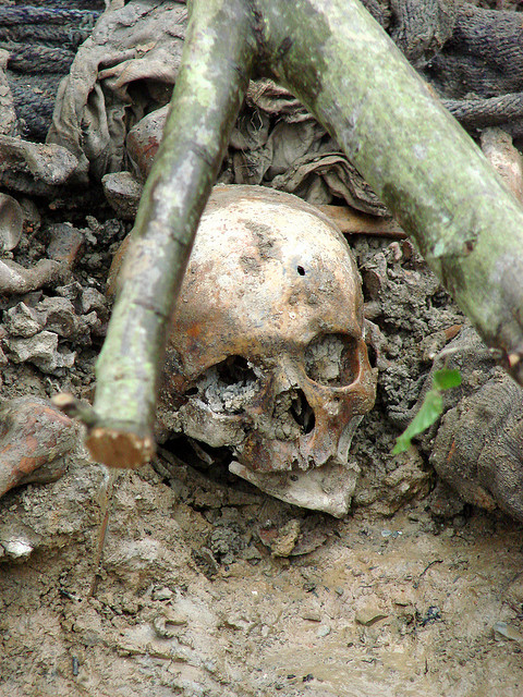 Srebrenica Massacre Skull, Photo by Adam Jones, Ph.D