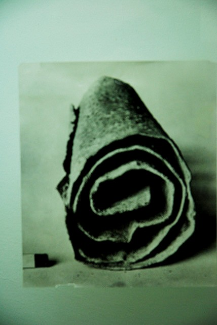 Ancient Scroll, Phot by Aran Tharpe
