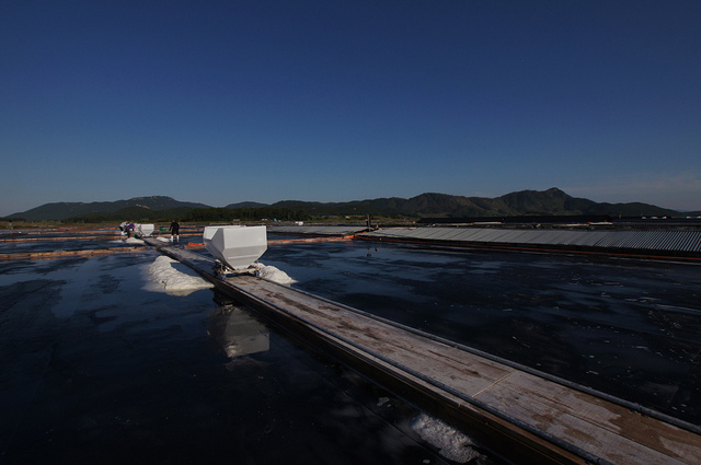 Salt works on the west coast, Jeollabuk-do Province, Korea, Photo by Bruce Stainsby