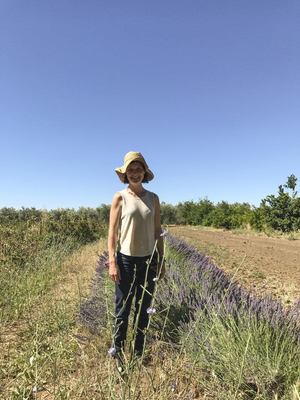 flatlands olive oil_20.JPG