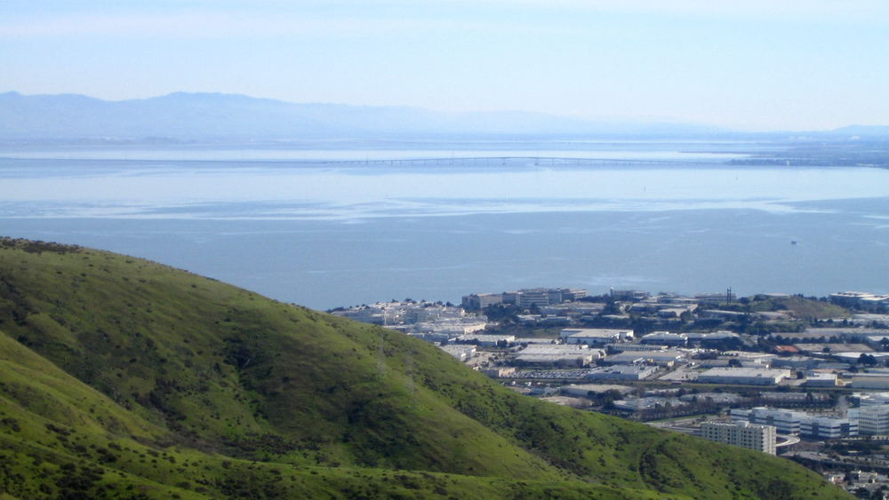 San Bruno Mountain Conservation