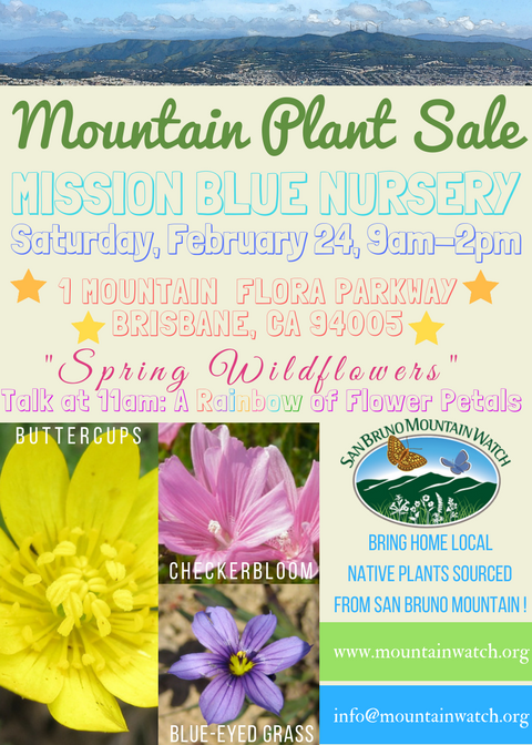 MBN Plant Sale Feb 24th 2018 Flyer.png