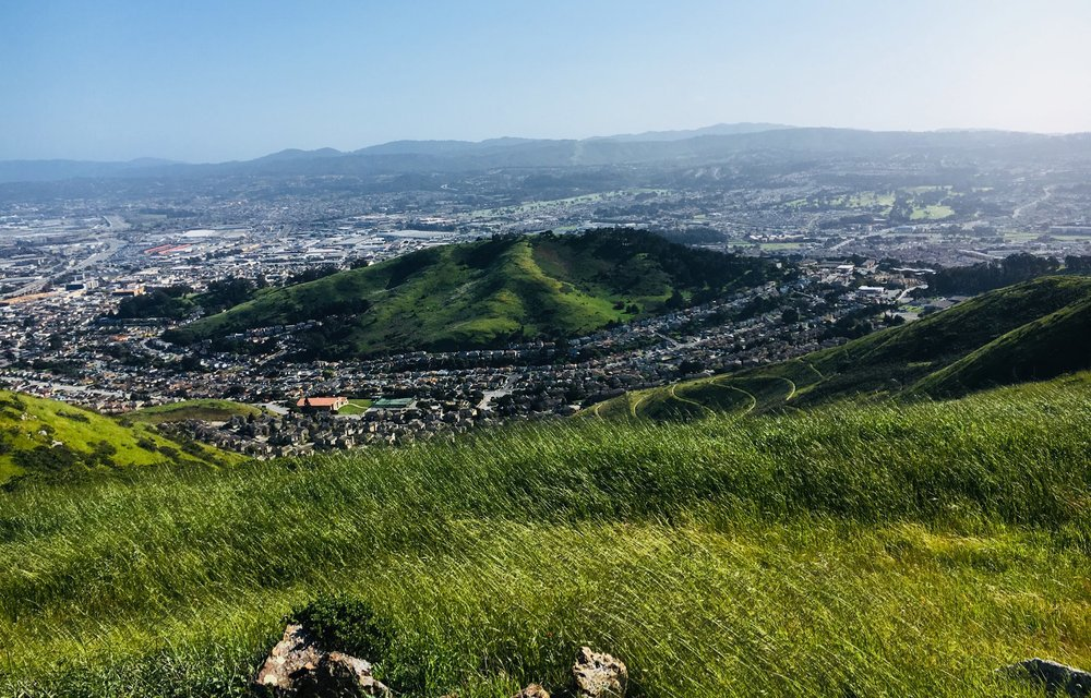 View of the northern side of Sign Hill as seen from the ridge of San Bruno Mountain