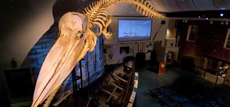Photo Credit:Nantucket Whaling Museum