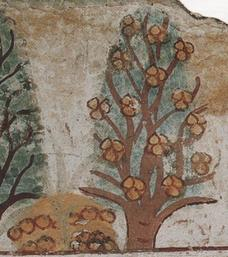 The  Persea  tree of Ancient Egypt. Source:  Cow of Gold , distributed under  CC 3.0 .