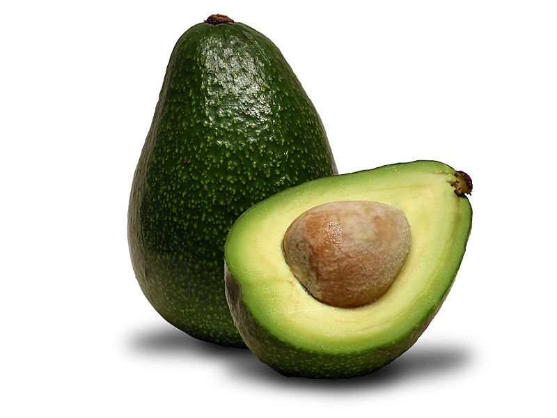 "The Avocado,  Persea americana . Named after the Egyptian  Persea . Photograph by ""Avacadoguy,"" distributed under  CC 4.0 , via  Wikimedia Commons ."
