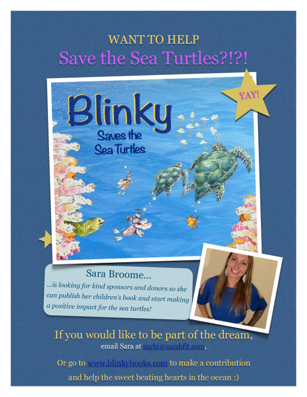 Blinky-Flyer-website.jpg