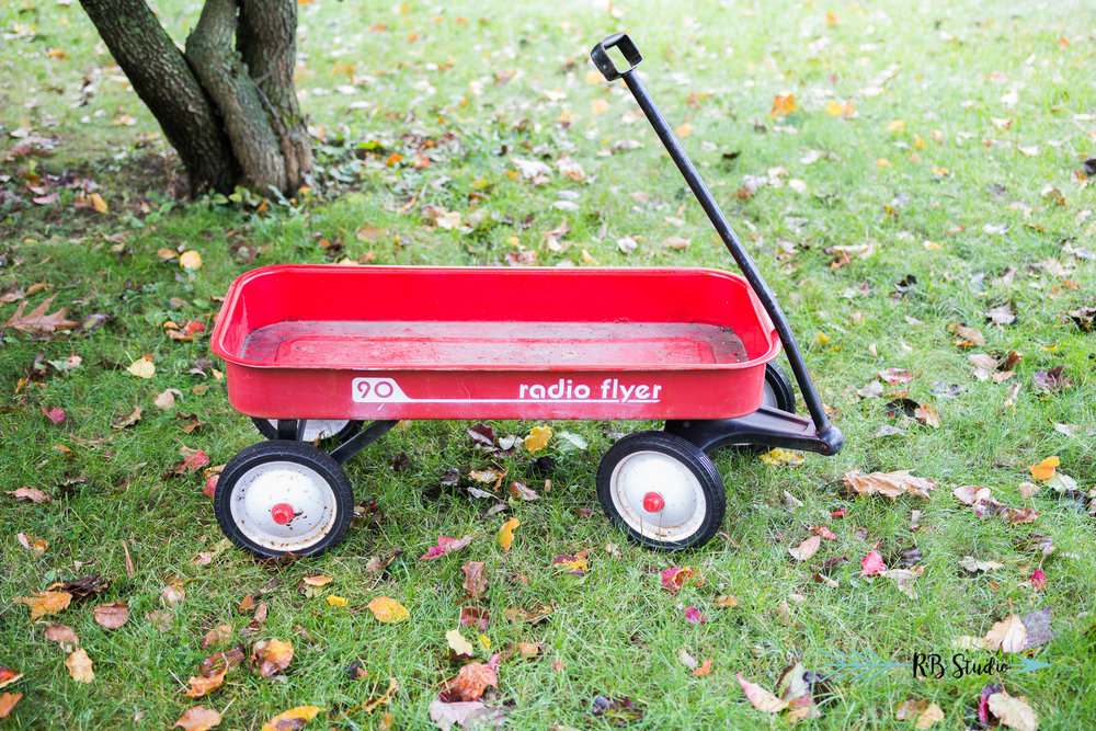 We just got this vintage radio flyer last week and are super excited to have this for the mini sessions!