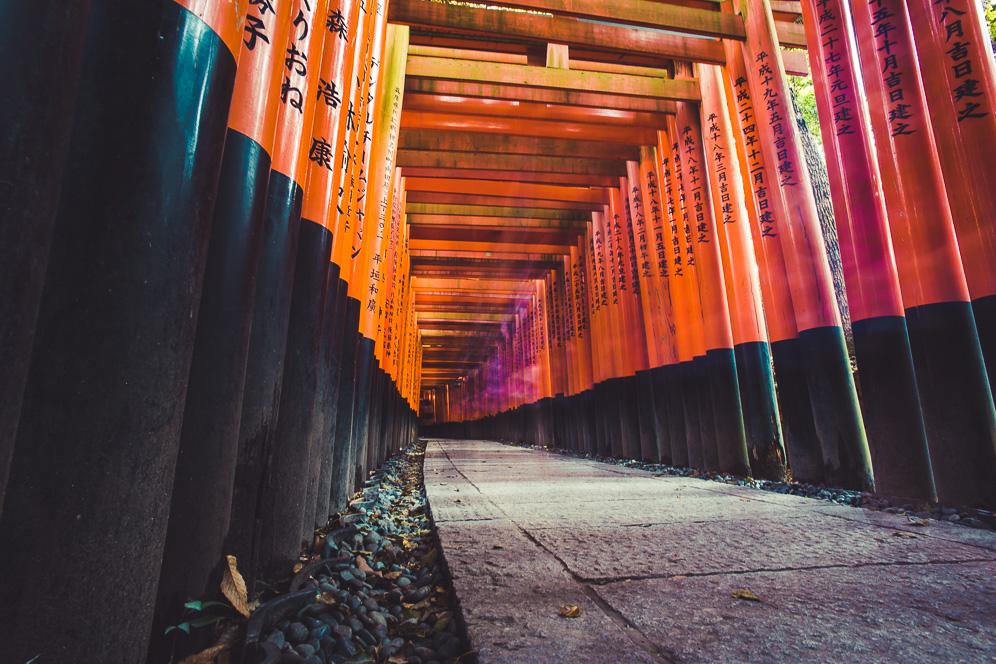 Fushimi Inari (5 of 14).jpg