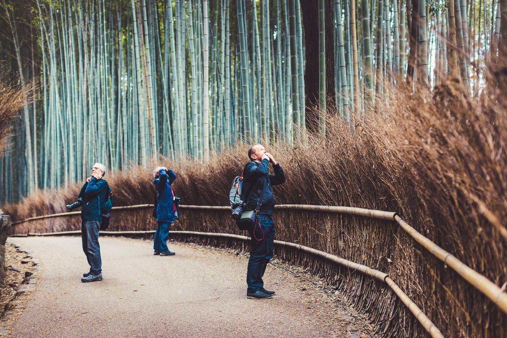 Arashiyama (9 of 55).jpg