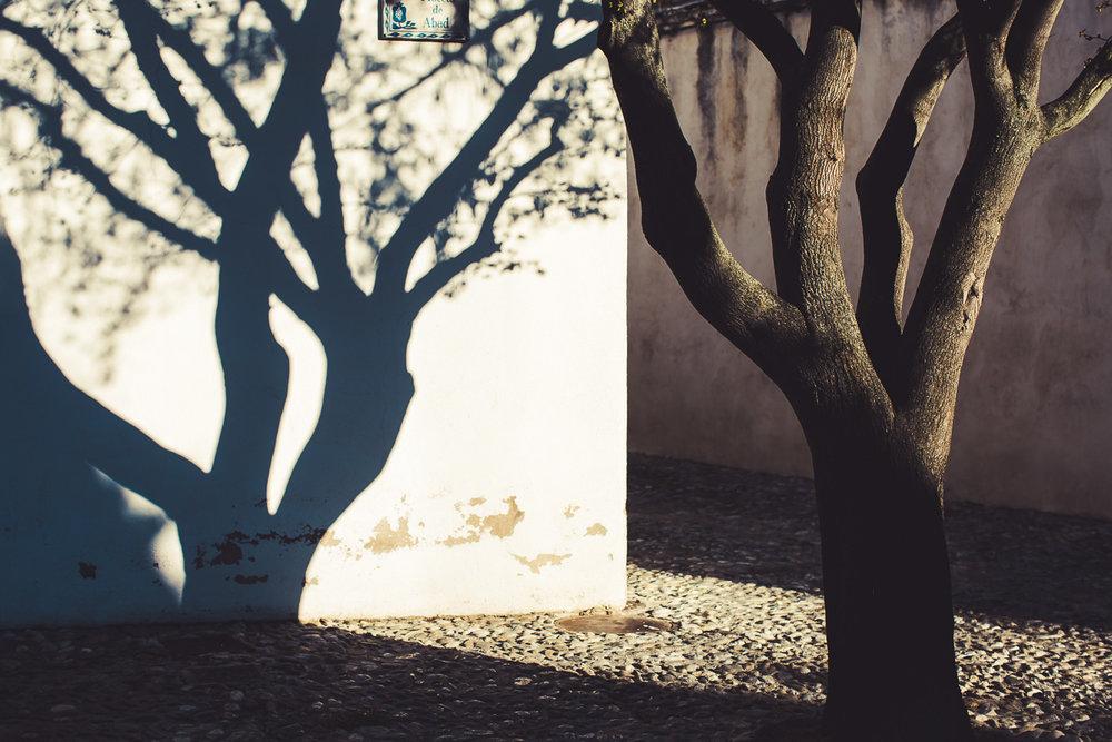 Granada (15 of 16).jpg
