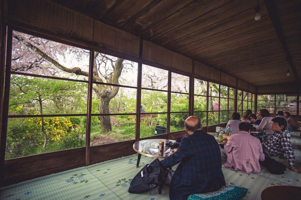 Kyoto Spring Day 2 (78 of 125).jpg