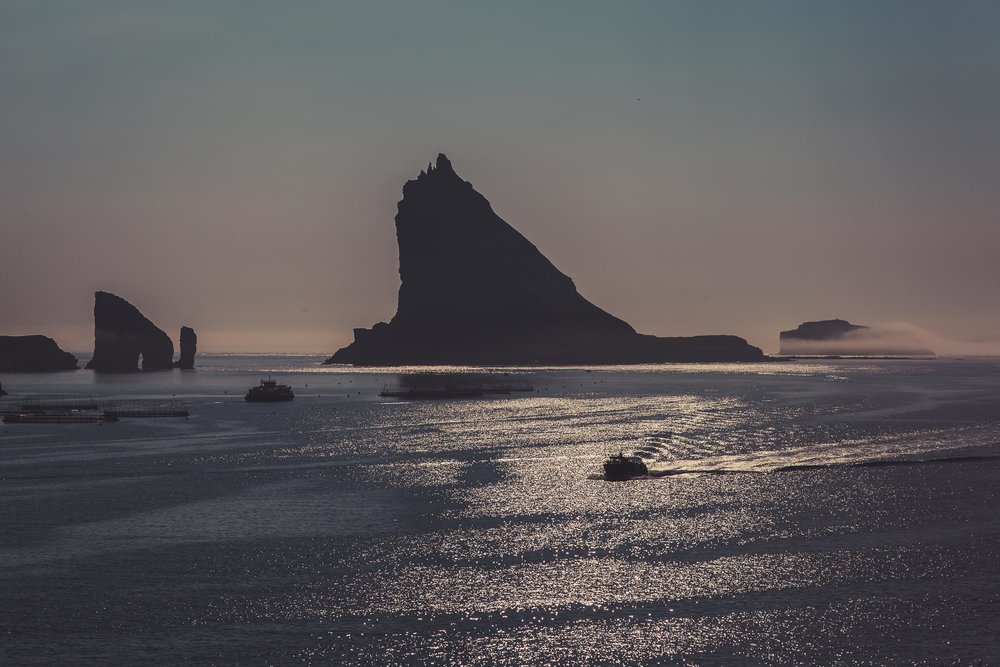 Faroe (8 of 21).jpg