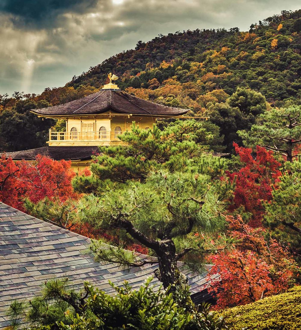 Kyoto Autumn (18 of 18).jpg