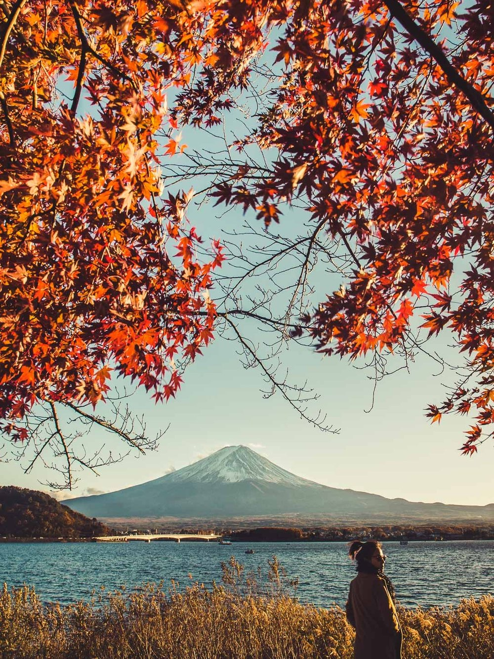 Autumn Mt. Fuji (2 of 6).jpg