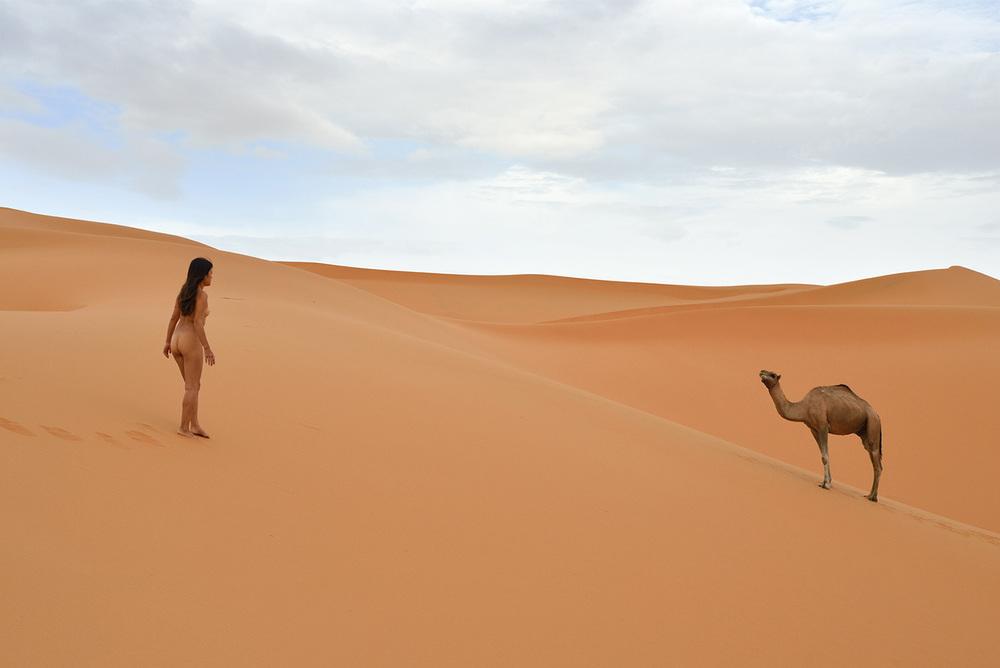 Erg Chebbi, <br>Morocco, Sahara 2