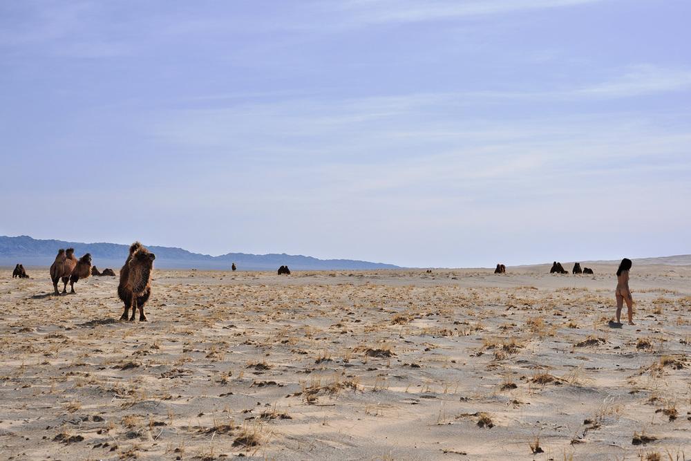 Khongoryn Els, Mongolia, Gobi 3