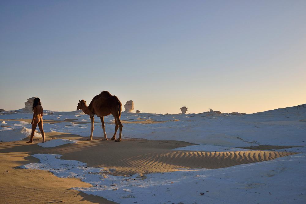 White Desert, <br>Egypt, Sahara 4