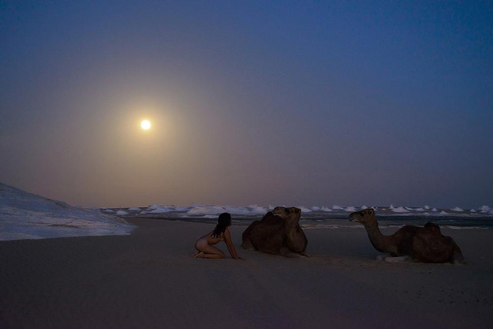 White Desert, <br>Egypt, Sahara 5