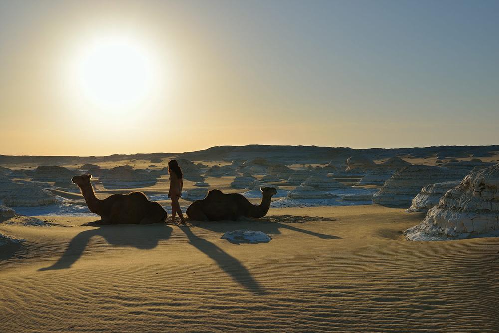 White Desert, <br>Egypt, Sahara  1