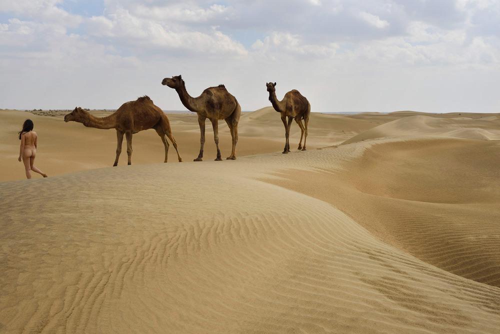 Siyala Dunes, <br>India, Thar Desert 3